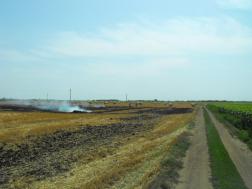 Égő tarlót oltanak a hevesi tűzoltók